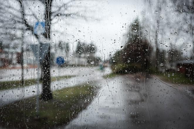rainyday-2-1