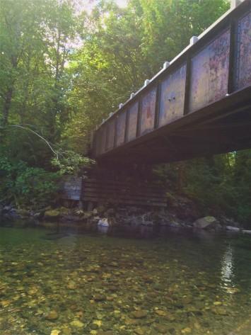 bridge (5)